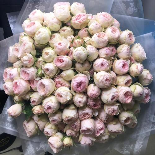 Купить на заказ 101 пионовидные розы с доставкой в Нур-Султане