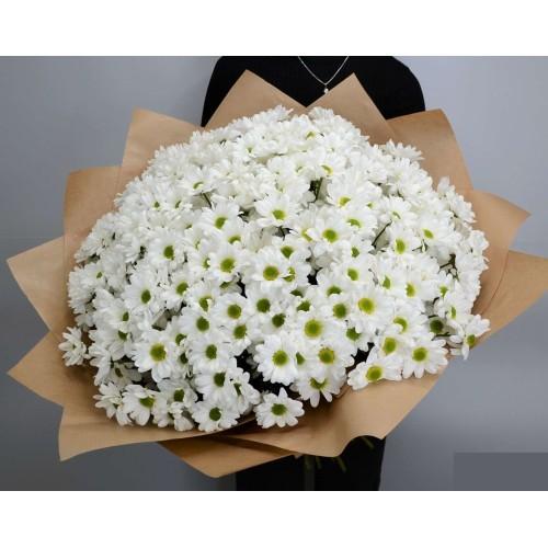 Купить на заказ 51 белая хризантема с доставкой в Нур-Султане