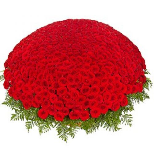 Купить на заказ 301  роза с доставкой в Астане