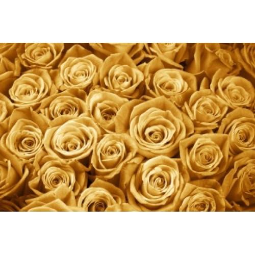 Купить на заказ Золотые розы  101 шт с доставкой в Нур-Султане