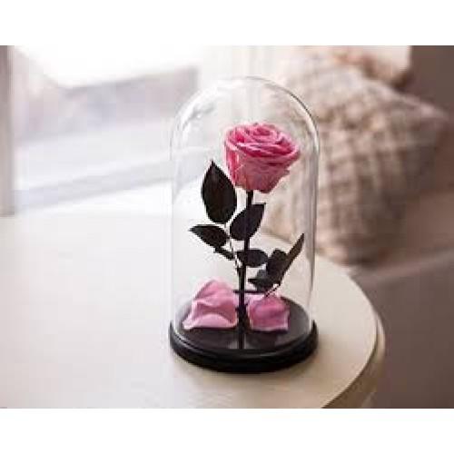 Купить на заказ Роза в колбе розовая с доставкой в Нур-Султане
