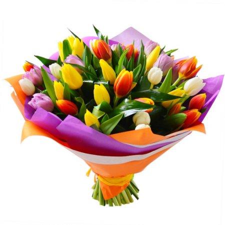 Купить тюльпаны в Астане